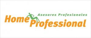 home professional, aseo integral casas-departamentos