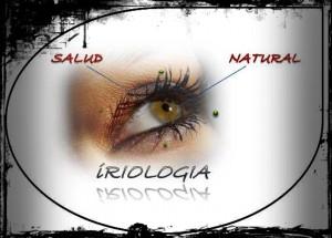 servicio de iridologia renca. centro bienestar y salud salud-medica