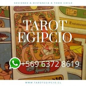 tarot profesional a distancia +569 6372 8619