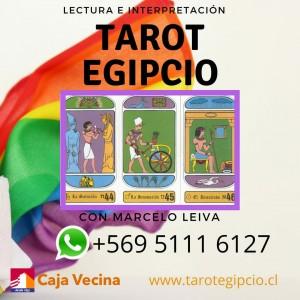preocupaciones en el amor, dinero, familia. consulte al tarot egipcio