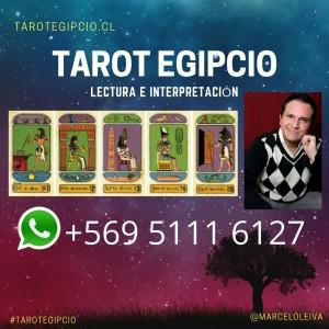 lectura e interpretación de tarot egipcio online