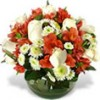 Regalos para Hombres con despacho a domicilio, Rosas y arreglos Florales