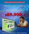 Diseño WEB Basico + Hosting 1 año OPORTUNIDAD Unica $89.900.-