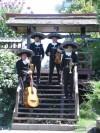 Contratar Mariachis para serenata  02-7279788
