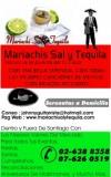 sal y tequila serenatas para todo chile
