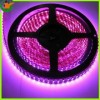 YOY Technology Co., Ltd.