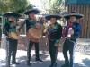 sal y tequila 100% serenatas mariachis en vivo